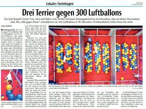 AlleGegen1_Terrier-vs-Ballons / Bericht HK 17.02.2020